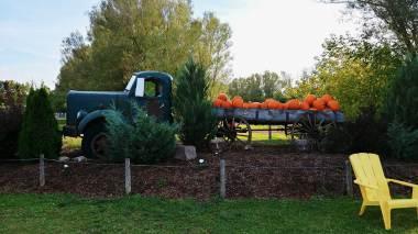 Autumn adventures at Snyder's family Farm