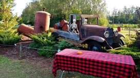 Snyders Family Fear Farm