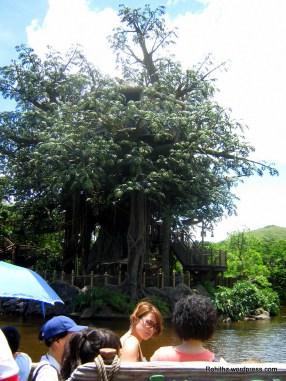 River cruise to Tarzan's Tree House.