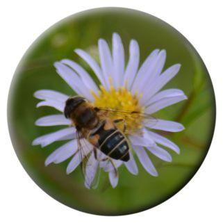 Wasp (hoverfly?) on michaelmas daisy
