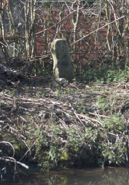 19 mile stone