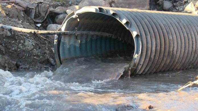 La destruction de la nature augmente de jour en jour au Kurdistan. Les forêts de la région de Sırnak ont été déboisées et brûlées pendant l'été. Plus récemment, on rapporte que 500 chèvres sauvages ont été tuées par les gardes du village de Sêgirkê, dans la ville d'Uludere. Aujourd'hui, l'eau des mines de charbon situées à la périphérie du mont Cûdî (Djoudi) est déversée dans la rivière Nerdus. Celle-ci prend sa source dans le mont Cûdî et parcours des dizaines de villages ainsi que les plaines de Silopi et de Cizre, avant de se jeter dans le Tigre. Les habitants de la région sont en colère du fait de la pollution croissante de la rivière au cours de ces deux dernières années qui menace l'agriculture et l'élevage.