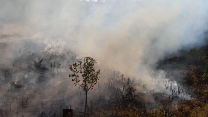 Les bombardements menés par l'armée turque au Kurdistan irakien ont provoqué un incendie dans la région d'Amadiya.
