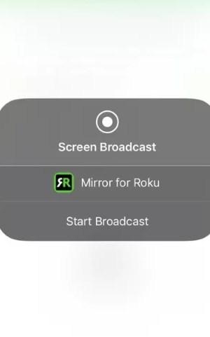Click Start Mirroring option