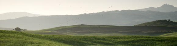 Val D'Orcia 2013 24