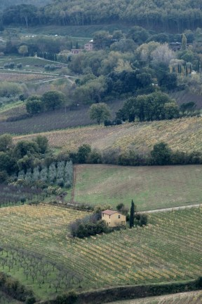 Val D'Orcia 2013 5