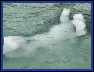 Sep08-Greenland Ice-Polar Bear