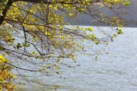 HERBST_Roland Wegerer_Along the Danube_18