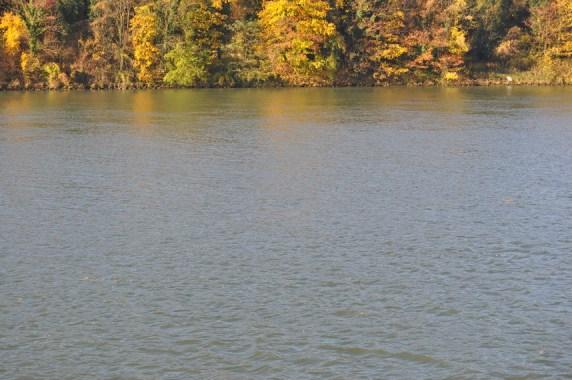 HERBST_Roland Wegerer_Along the Danube_25