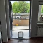 moskitiera drzwiowa z drzwiczkami dla psa widok wewnątrz