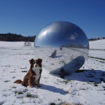 Silberball im Schnee