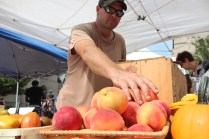 Brian Rosado puts out fresh peaches in his stand.