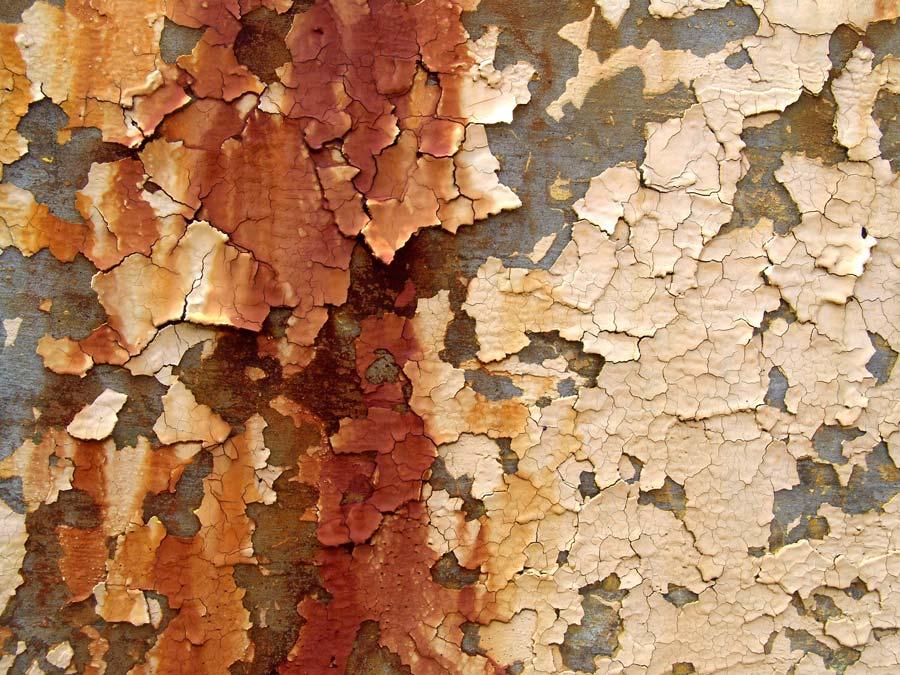 Harmful lead paint peeling off way