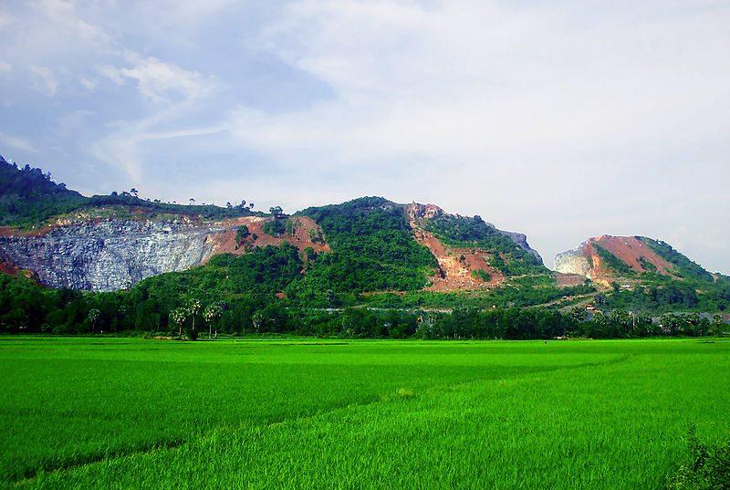 tri-ton-vietnam