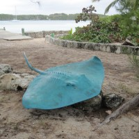 A TRIP TO CHEROKEE & LITTLE HARBOUR, ABACO