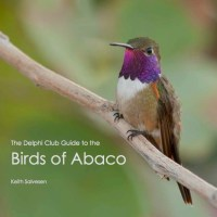 """BIRDS OF ABACO"""