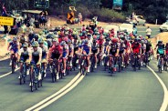 A warm day for the peloton