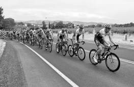 Orica take up the front position