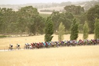Strong winds smash the peleton