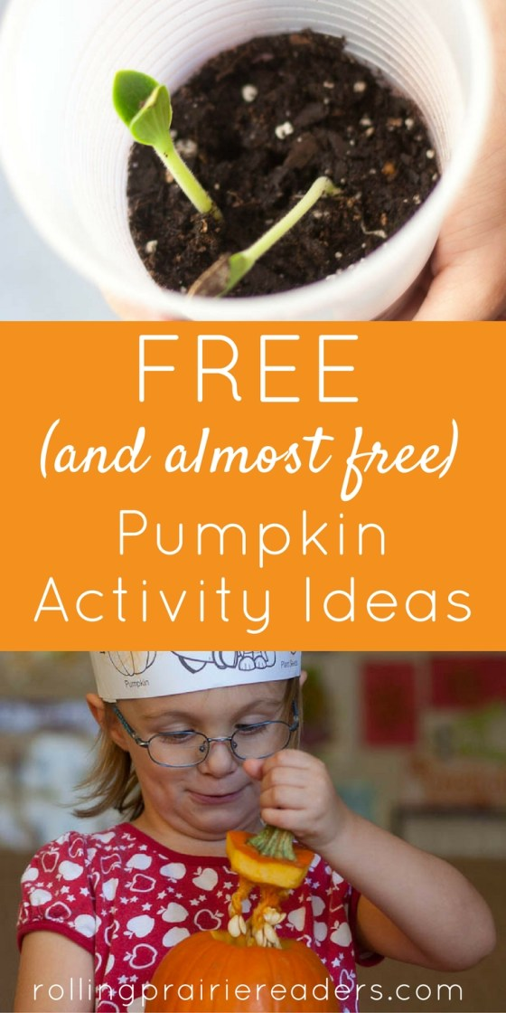 Pumpkin Activity Ideas for Toddlers and Preschoolers | free pumpkin learning for kids, recommended pumpkin picture books, pumpkin printables, crafts