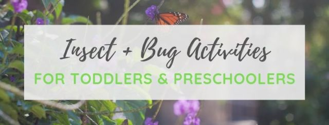 Insect and Bug Activities for Kids