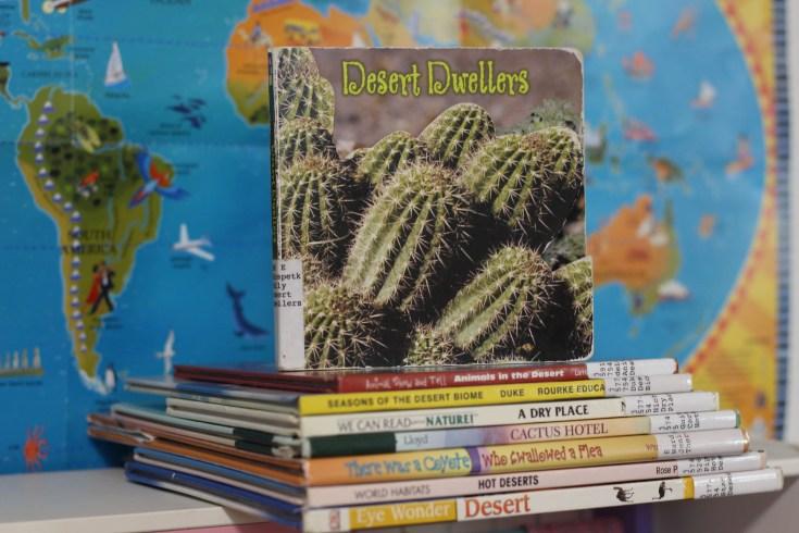 13 Desert Books for Kids