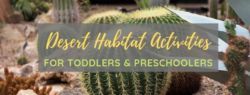 Desert Habitat Activities for Kids