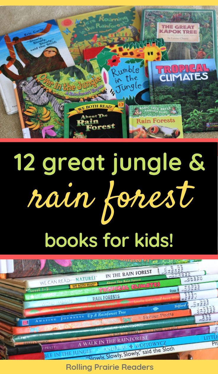 Jungle and Rain Forest Books for Kids
