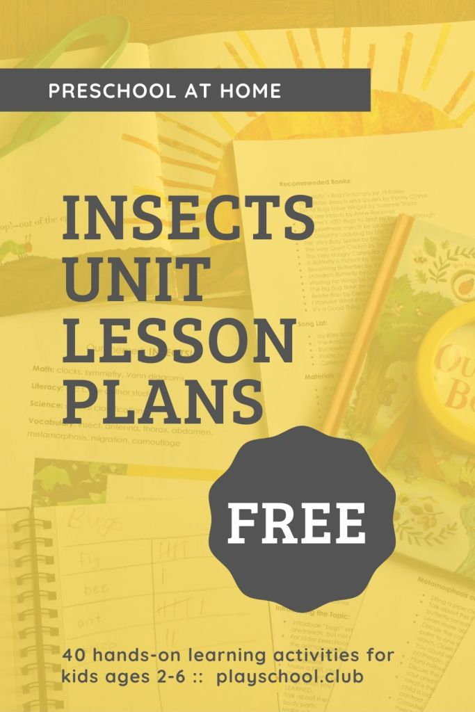 FREE Insect Unit Lesson Plans for Preschool at Home