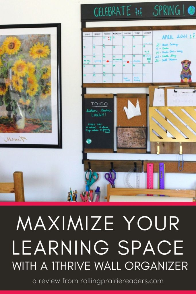 Maximize Your Learning Space With a Wall Organizer