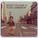 What Colour Is Your Raindrop cover art