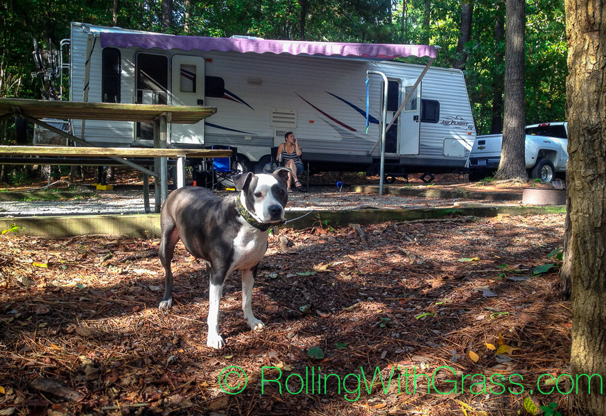 Davey Rolling with Grass Campground Jordan Lake NC Fall 2014