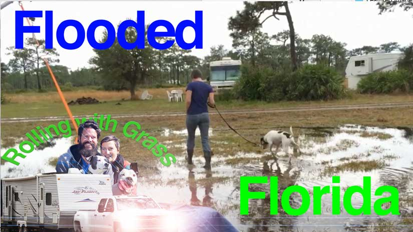 Flooded Florida buy some Galoshes Rolling with Grass