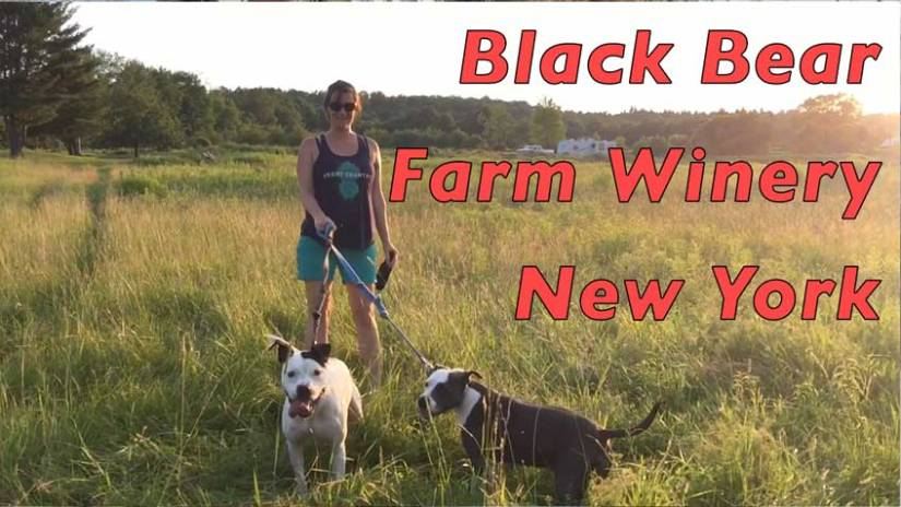 RV Camping NY: Black Bear Farm Winery
