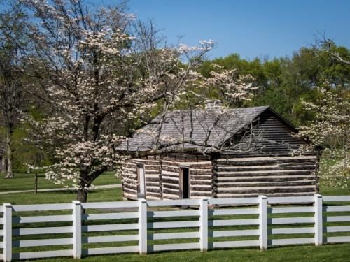 Nashville TN - Andrew Jackson - 2