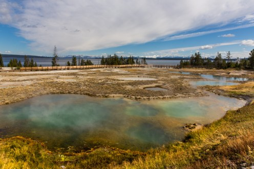 Yellowstone-West Thumb Geyser Basin-7731