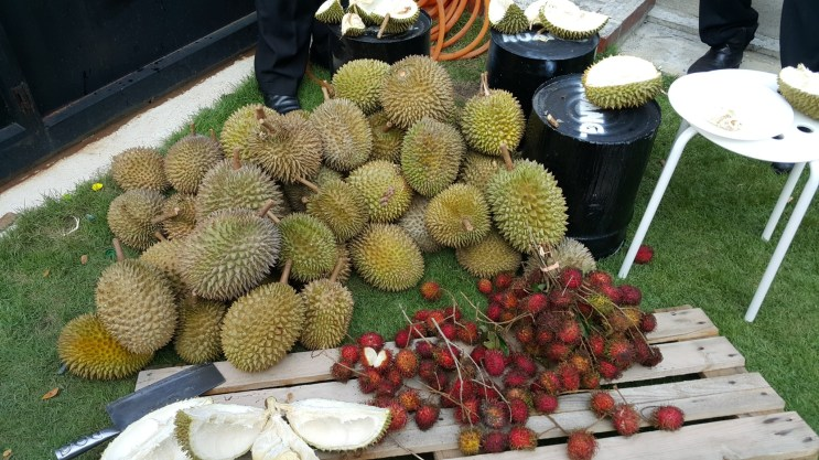 Local fruits galore