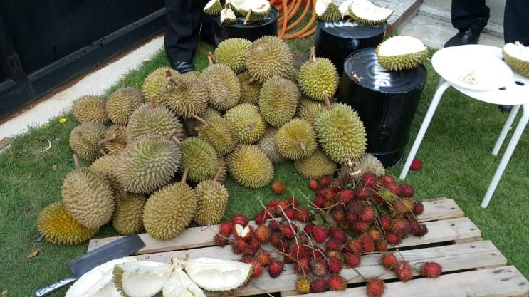 Local fruits galore