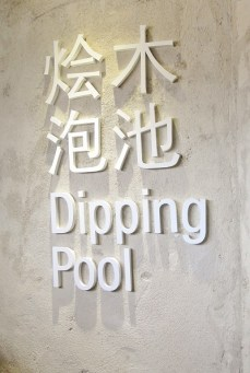 Dipping Pool (2) - Herbaline. Sojourn Guest House