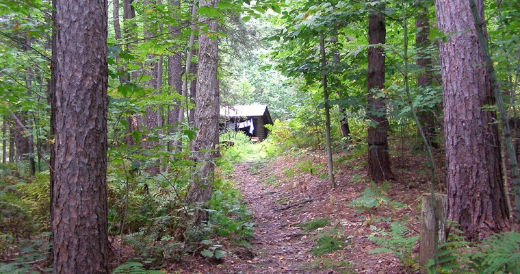 Best Vermont Campground: Coolidge State Park