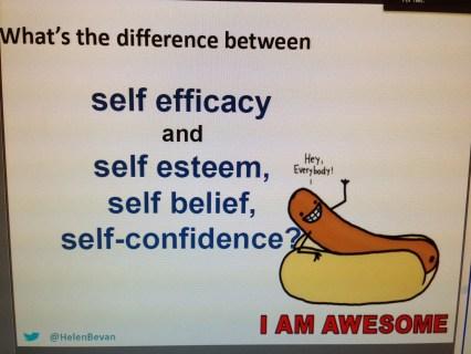 selfefficacy
