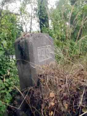 Denne steinen står i veikanten av Rolvsøyveien på høyre side i nærheten av Solheim, når vi kjører nordover. Steinen er merket 40Foto: Tom Raae