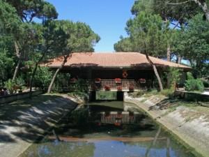 Il bar del Parco naturale di Cervia
