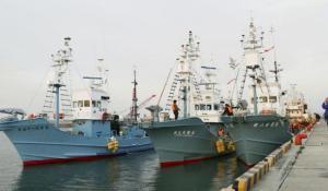 Три японских корабля отправились на китобойный промысел Япония возобновила охоту на китов в коммерческих целях 1 июля прошлого года
