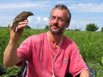 Benoit and an Ortolan bunting male after get back its geolocator system
