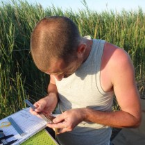 Benjamin Vollot in the assessment of the wing formula of a Reed Warbler