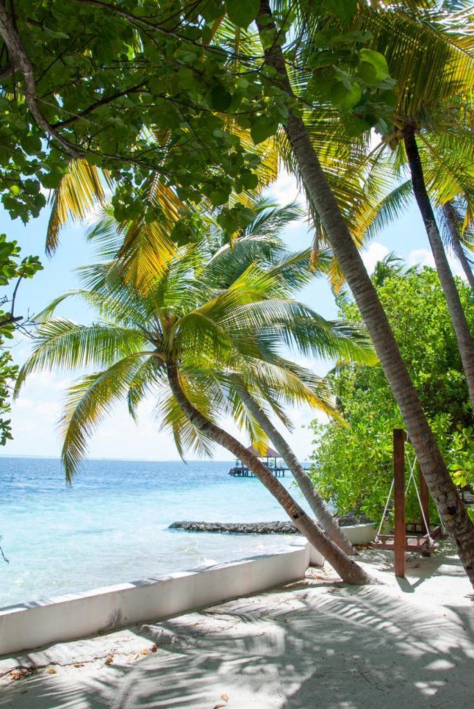 maldives-vac-0046_small