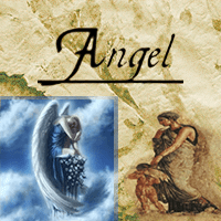 AngelScrubPL