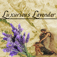 LuxuriousLavenderScrubPL