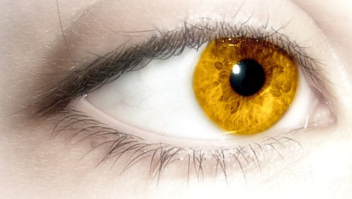 Very Rare Gold Eye Color